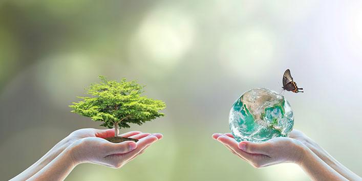 हमारे पर्यावरण के लिए सहायक